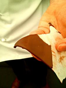 poezija-cokolade-Martin-Chiffers-Master-Class-09