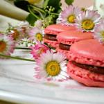 macarons-Kristina-Gaspar-recepti-i-kuvar-online-01
