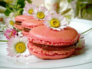 macarons-Kristina-Gaspar-recepti-i-kuvar-online-011