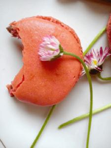 macarons-Kristina-Gaspar-recepti-i-kuvar-online-05