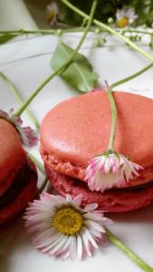 macarons-Kristina-Gaspar-recepti-i-kuvar-online-08