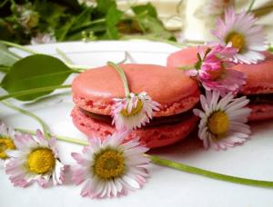 Macarons - Kristina Gašpar - Recepti i Kuvar online