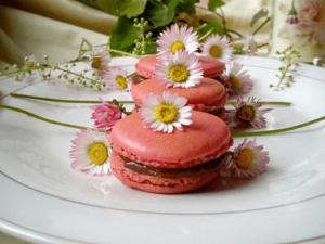 macarons-Kristina-Gaspar-recepti-i-kuvar-online-14