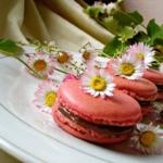 Macarons by Kristina Gašpar | Recepti & Kuvar Online - Šta da kuvam danas? 3