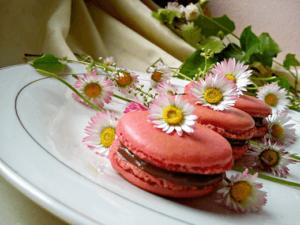 macarons-Kristina-Gaspar-recepti-i-kuvar-online-15