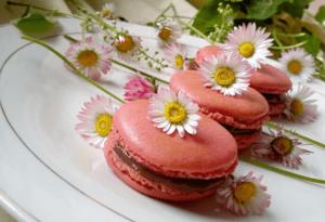 macarons-Kristina-Gaspar-recepti-i-kuvar-online-16