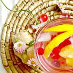 osvezavajuci-napitak-Kristina-Gaspar-recepti-i-kuvar-online-02