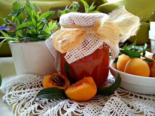 Pekmez ili džem od kajsija - Kristina Gašpar - Recepti i Kuvar online